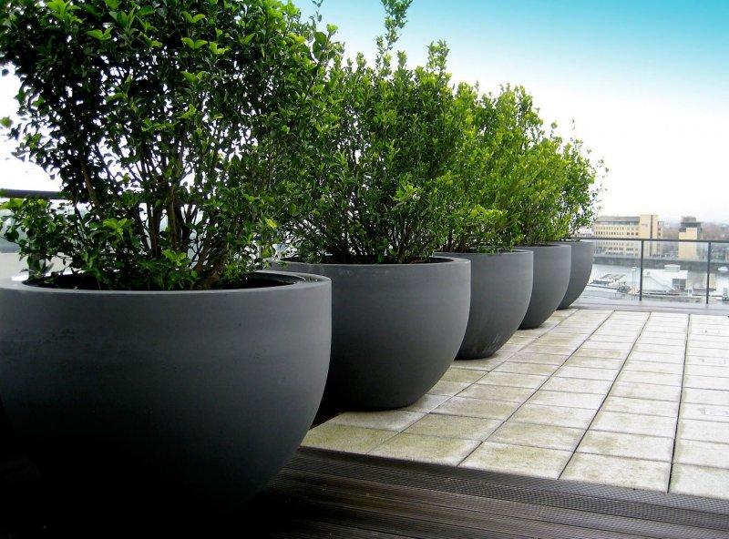 Вазы для сада из цемента и ткани своими руками (56 фото): как сделать модель для цветов в форме «ладошек» из бетона и полотенец{q}